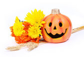 Halloween pumpkin and fall flowers isolated on white — Stock Photo