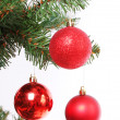 Red Christmas balls on Christmas tree branch, isolated on white — Stock Photo #16147201