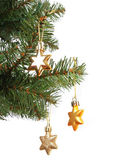 Gold stars on Christmas tree branch, isolated on white background — 图库照片