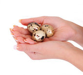 Quail eggs in hands isolated on white — Stock Photo