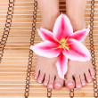 Beautiful manicured female bare feet with pink lily flower over bamboo mat feet care, spa — Stock Photo #19446925