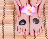 Foot care, beautiful female feet and hands with french manicure on bamboo mat with orchid flower and spa stones — Stock Photo