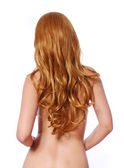 Curly brown hair, backside of young woman with long hair isolated on white — Stock Photo
