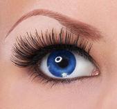 ögon med långa ögonfransar. vacker kvinna blå öga — Stockfoto