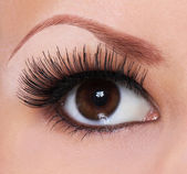 Eye with long eyelashes. beautiful woman brown eye — Stok fotoğraf