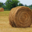 Haystack on the field. USA — Stock Photo