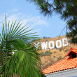 Hollywood sign behind palm tree.  Los Angeles — Stock Photo