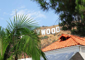 Hollywood sign behind palm tree in Los Angeles — Stock Photo