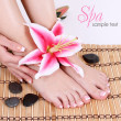 Stock Photo: Manicured female bare feet with pink lily flower and spstones over bamboo mat. Feet care.