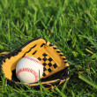Baseball in yellow glove on the green grass — Stock Photo #30885381