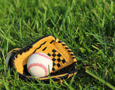 Baseball in yellow glove on the green grass — Stock Photo