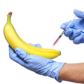 Injection into banana isolated on white background. Genetically modified fruit and syringe in his hands with blue gloves — Stock Photo