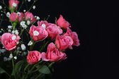 Bouquet of Pink Roses on black background. — Stock Photo