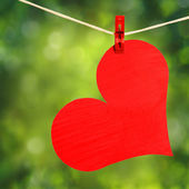 Red Heart with Clothespin Hanging on Clothesline over Nature — Zdjęcie stockowe