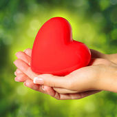 Red heart in female hands, over Nature Green Sunny Background. — Stock Photo