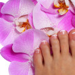 Pedicure with pink orchid flower. Beautiful female foot — Stock Photo #39826173