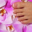 Pedicure with pink orchid flower. Beautiful female foot — Stock Photo #39826175