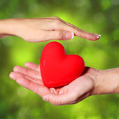 Valentine Heart in Female and Male Hands, over Nature — Foto Stock
