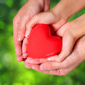 Love. Valentine Heart in Female and Male Hands, over Nature — Stock Photo