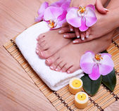 French Manicure on Beautiful Female Feet and Hands — Stock Photo