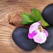 Stock Photo: Zen pebbles. SpStones and Pink Orchid Flower with Green Leaves