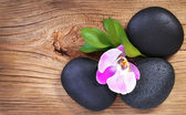 禅宗的鹅卵石。spa 石头和粉红色的兰花花,绿色的叶子 — 图库照片