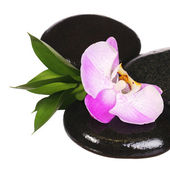 Zen pebbles. Spa Stones and Pink Orchid Flower with Green Leaves — Stock Photo