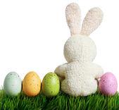 Coloridos ovos de Páscoa e coelho na grama, isolado no branco — Fotografia Stock