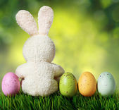 Colorful easter eggs and rabbit on green grass over bokeh — Stock Photo