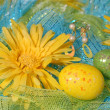 Yellow Daisies with Easter Eggs over Shiny Fabric. — Stock Photo
