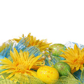 Yellow Daisies with Easter Eggs over white background — ストック写真