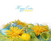 Yellow Daisies with Easter Eggs over white background. Spring Decoration — Stock Photo