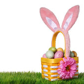 Easter basket with colorful eggs and bunny ears on green grass — Stock Photo