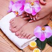 French maniküre auf schöne weibliche füße und hände — Stockfoto