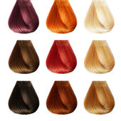 Hair Palette. Colors Set. Tints — Stock Photo