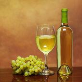 Botella de vino y vaso de vino blanco con uvas frescas sobre beige — Foto de Stock