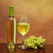 Wine Bottle and Glass of White Wine with Fresh Grapes — Stok fotoğraf