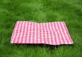Picnic  Retro Tablecloth on Green Grass — Stock Photo