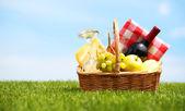 Picknick-korb auf der grünen wiese흰색 바탕에 너트와 벡터 붉은 다람쥐 — Stockfoto