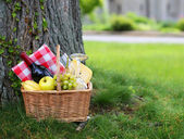 Picnic basket with food on green grass — Stock Photo