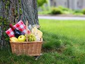 Piknikový koš s jídlem na zelené trávě — Stock fotografie