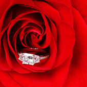 Engagement Ring in Red Rose. Macro — Stock Photo