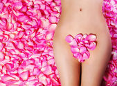 Petals of Pink Roses on woman's body. Concept of Waxing. Bikini — Stock Photo