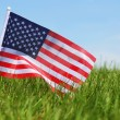 American Flag on Green Grass — Stock Photo #47049747