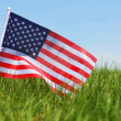 American Flag on Green Grass — Stockfoto #47049747
