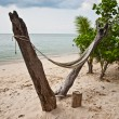 Hammock on the beach — Stock Photo #13279067