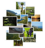 Set of photographs with landscapes — Stock Photo