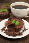 Chocolate cake with nuts and mint — Foto Stock