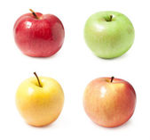 A set of four varieties of apples — Stock Photo