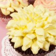 Cupcakes with buttercream — Stock Photo